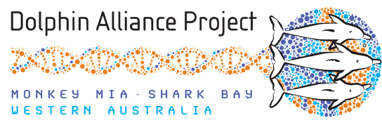 Shark Bay DAP Logo